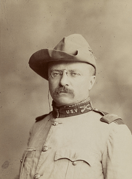 Letters to Theodore Roosevelt