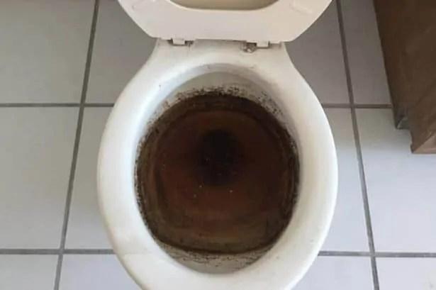 nasty poop toilet
