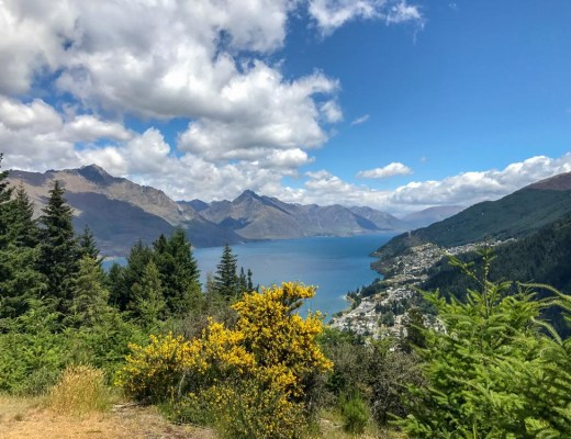 Queenstown Hill Highlights of New Zealand