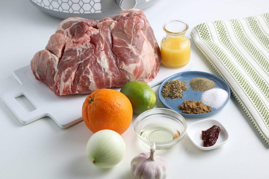 horizontal ingredient shot of pork carnitas