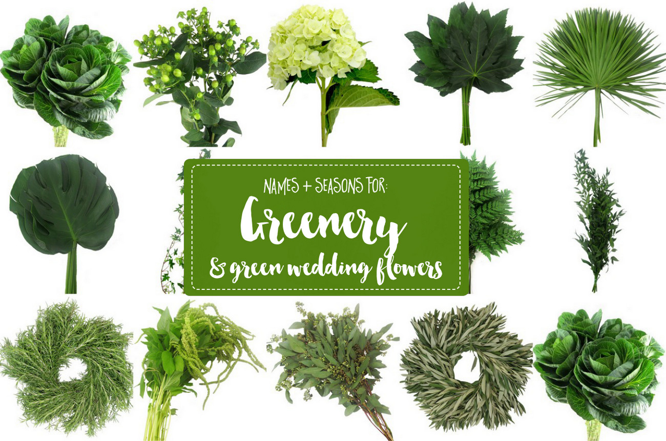 The Essential Guide To Greenery For Weddings + Green