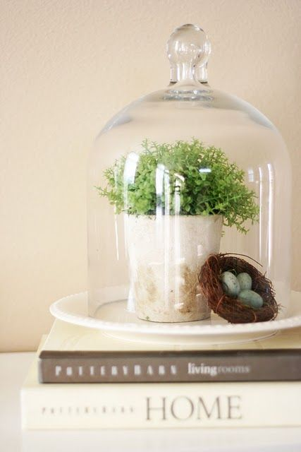 Under Glass | Decorating with Glass Cloches