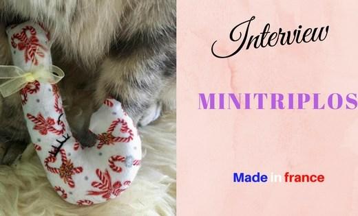 interview créateur made in france : les Minitriplos, des jouets pour chats fait mains tendances et chics à collectionner / secrets d'entrepreneur