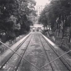 photo 3 (17)