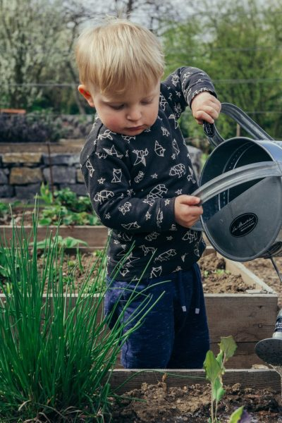 Growing your Home Garden with Erin Harrison – Podcast