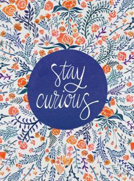 staycurious-navycoral-artprint