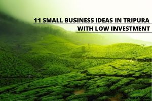 11 Small Business Ideas In Tripura With Low Investment In 2021