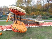 Pumpkin plane