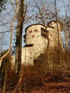 Burg Reichenstein