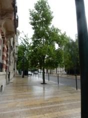 Avenue de Champagne