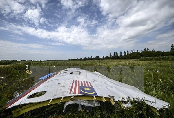 Mảnh vỡ máy bay MH17 tại khu vực gần làng Grabove, Donetsk, Ukraine. (Nguồn: AFP/TTXVN)