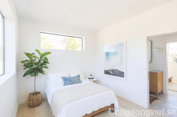 Không gian chỉ được sử dụng với nội thất cơ bản, màu sắc đơn giản, điểm nhấn dịu dàng và nghệ thuật từ chậu cây xanh và tranh treo tường.