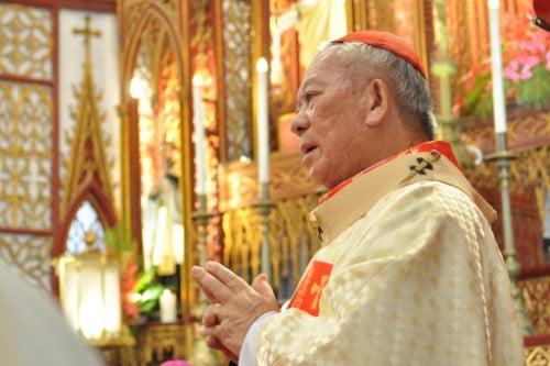 Vatican chấp thuận đơn từ nhiệm của Hồng y Phêrô Nguyễn Văn Nhơn
