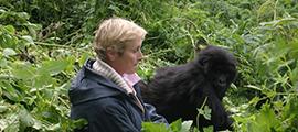 10 days Rwanda wildlife tour Congo gorilla trekking safari