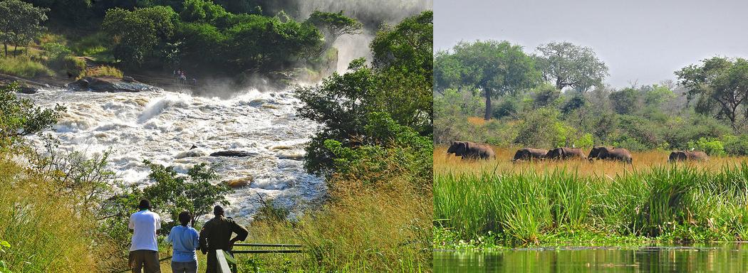 murchison-falls-np-tour