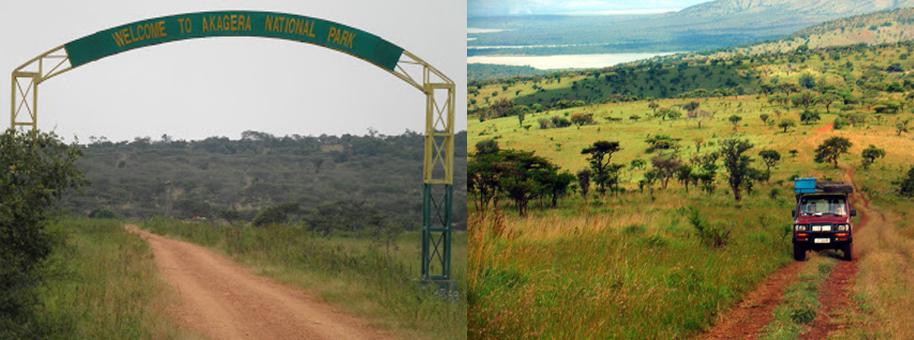 akagera-national-park-drive