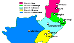 RDC/Ituri : 28 civils enlevés, 1 blessé, 90 vaches volées lors de l'incursion des ADF à Boga ( Bilan provisoire)