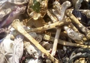 Horreur à Bukavu: un dépôt d'ossements humains découvert au cimetière de la Ruzizi