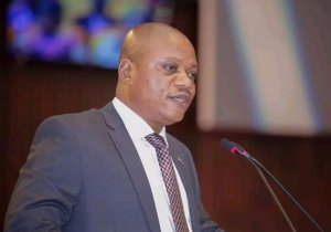 Assemblée nationale : Kabund, la star à l' élection du bureau définitif
