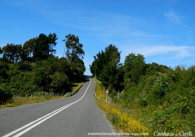 estrada-Punihuil-Chiloe-Chile