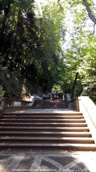 A escadaria logo após o Pórtico. Bom Jesus do Monte, Braga - Portugal.