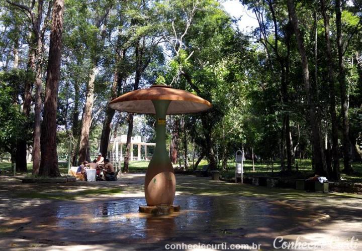 O Gêiser do Parque das Águas de Caxambu.