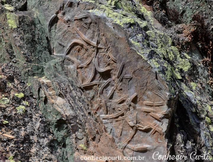 Imagem fossilizada na rocha, em Penha Garcia, Portugal.