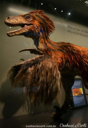 Museu de Viena, Dinobird.