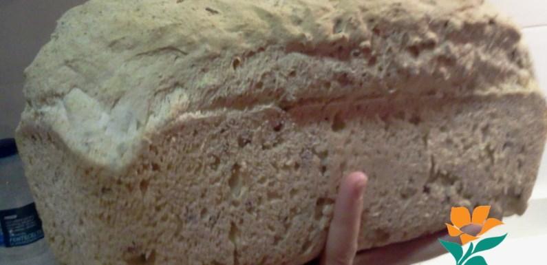 PAN RÁPIDO CON SEMILLAS (Sin gluten, sin huevo, sin lácteos, sin soja)