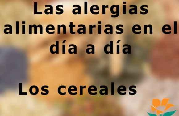 Vivir el día a día con alergias: Los cereales
