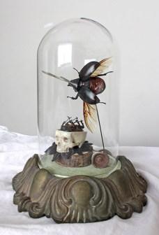 Rhino Beetles, metal horn, faux skull, wood, textile, gumnut