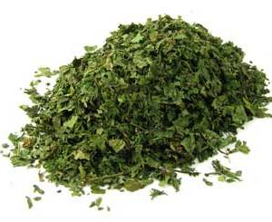 Nettle Leaf, herbs, oils, powders, sorcery, Hoodoo witchcraft, ceremonial magick at Conjure Work