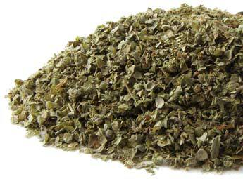 Marjoram, Oreganum marjorana, at Conjure Work, Mercury, Aries, Fire, witchcraft Hoodoo products high magick