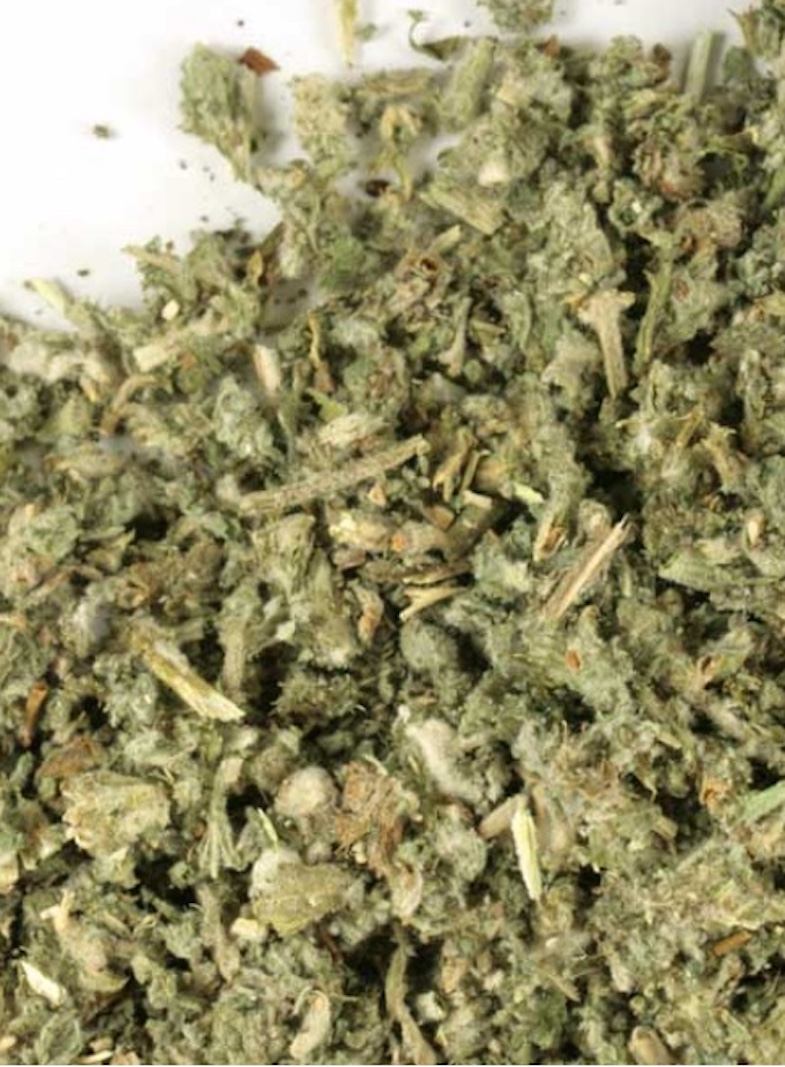 Horehound herb, Marrubium vulgare at Conjure Work, sorcery supplies services, witchcraft Hoodoo products high magick