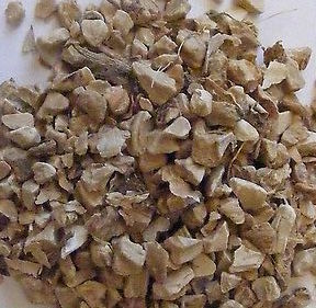 Queen Elizabeth Root, Iris germanica, woman's herb at Conjure Work, witchcraft, Hoodoo products magick