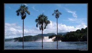 Laguna de canaima - Venezuela