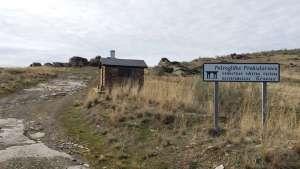 Petroglifos Cerro de San Isidro