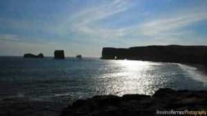 Peninsula de Dyrholaey - Islandia