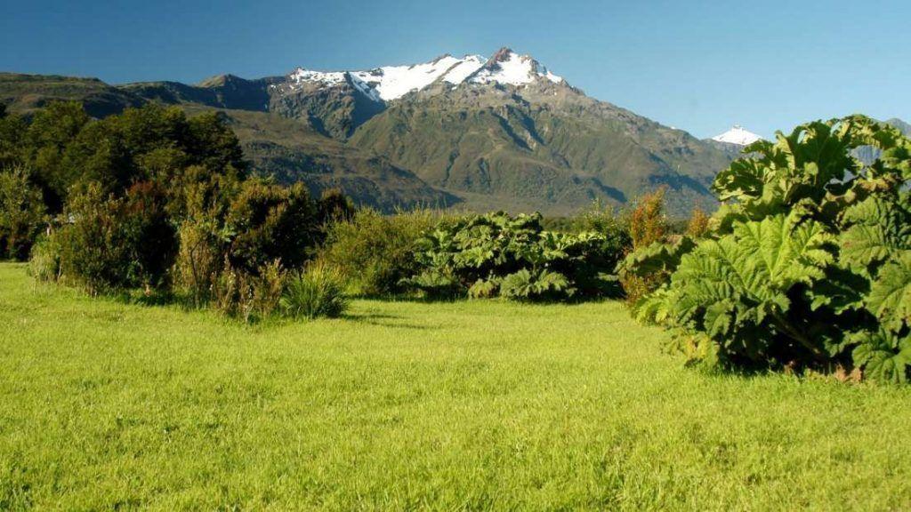 Parque Nacional Corcovado - Chile - Foto: Archivo fotográfico CONAF