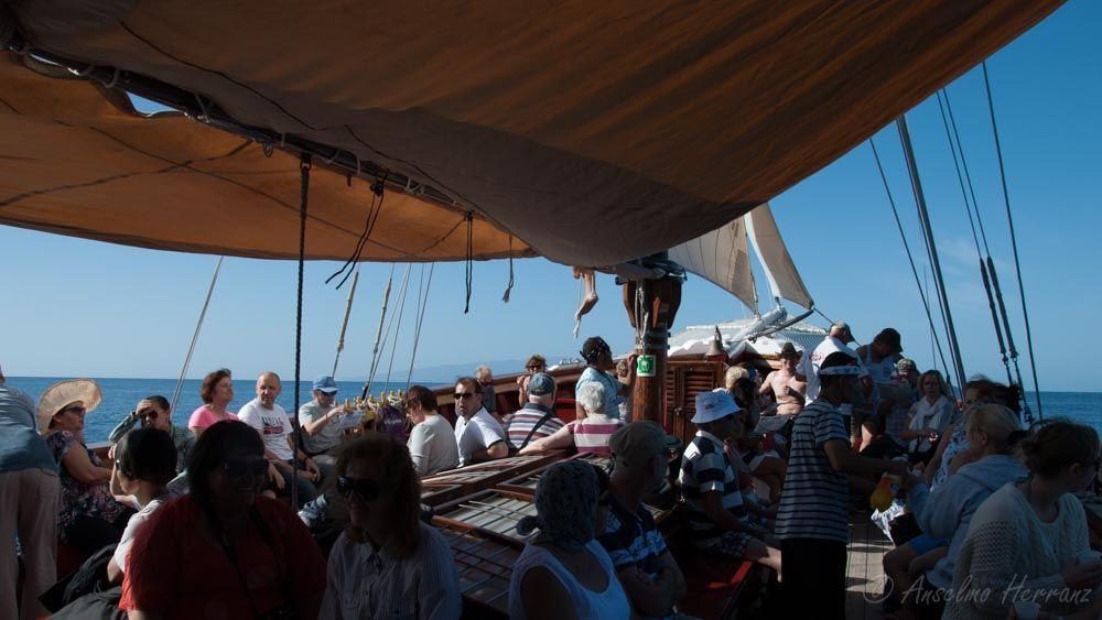 Turistas En Busca de Delfines - Tenerife
