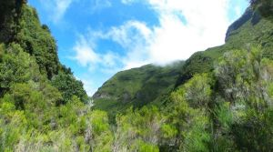 Vistas desde el tramo final de la levada 25 fontes - Madeira