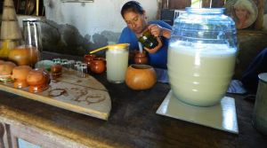 Pulque u Octli - Bebida típica de Mexico