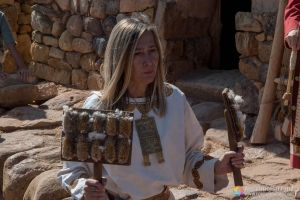 Utensilios para cardar lana - Numancia