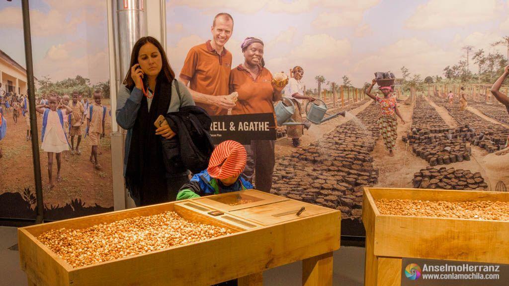 Fábrica de Chocolate Maison Cailler - Avellanas