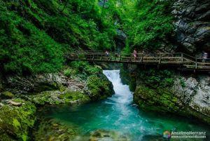 Garganta de Vintgar - Vintgar Gorge - Bled - Eslovenia