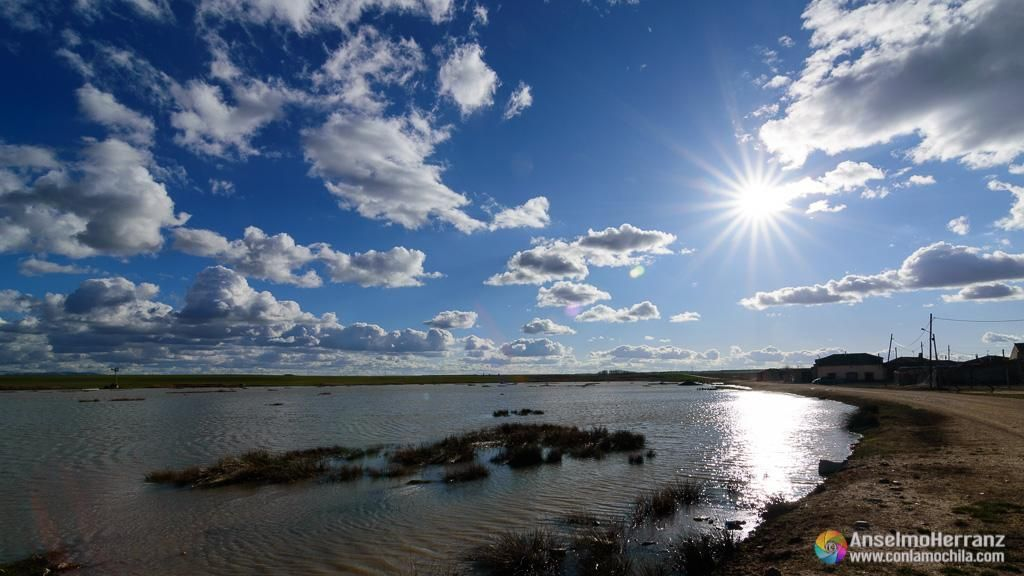Observando aves en la laguna de Laguna Rodrigo - Segovia