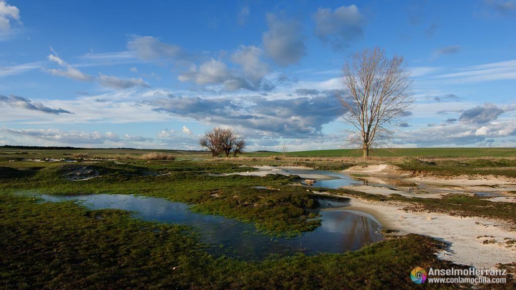 Lagunillas en torno a Laguna Rodrigo - Segovia