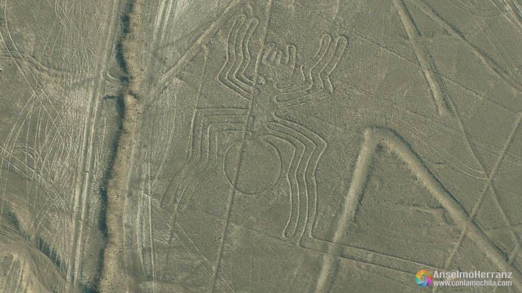 La Araña - Líneas de Nazca - Perú