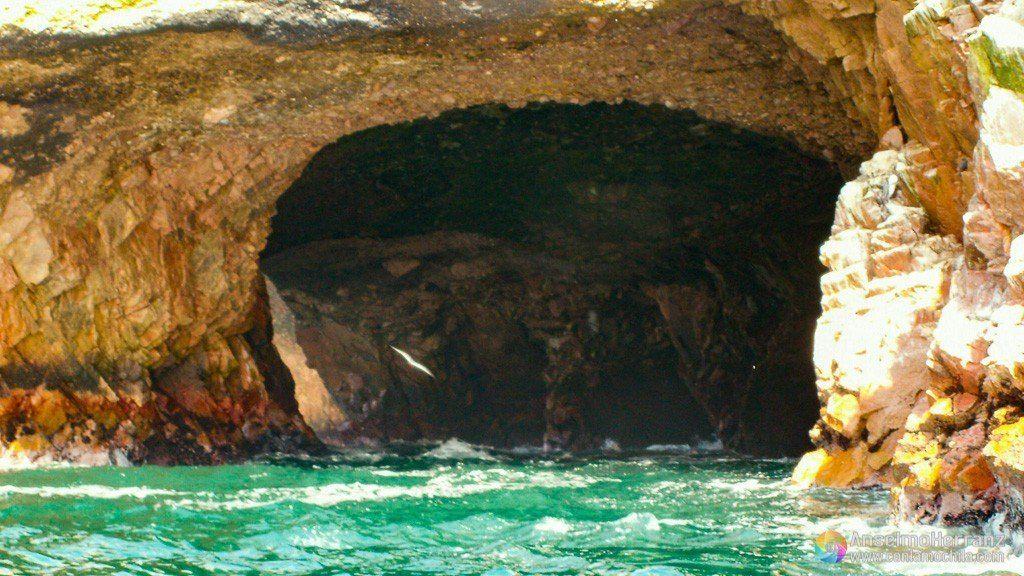 Cuevas creadas por la erosión en las Islas Ballestas - Ica - Perú