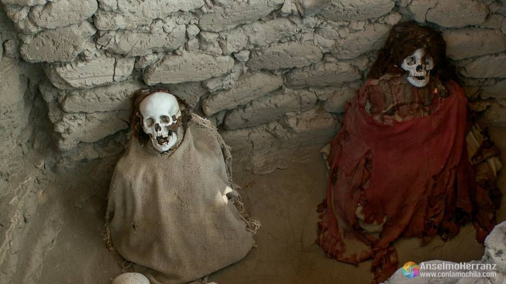 Esqueletos en la misma posición en la que fueron enterrados - Chauchilla - Nazca - Ica - Perú